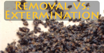Removal vs Extermination